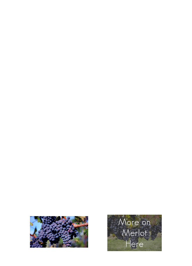 Red Wine Page Hawaii Wine Lover